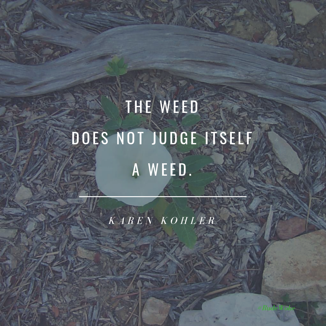 The weed does not judge itself a weed